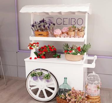 Candy bar CEIBO